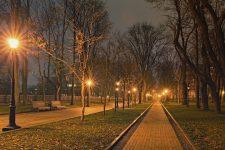 Аномально тепла погода: чому в Україні зникне зима