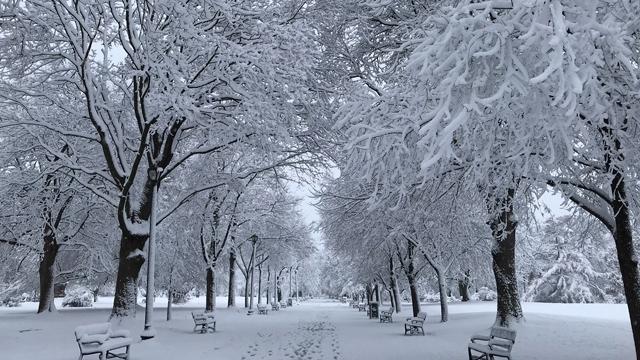 У трьох областях України тривають снігопади, обмежено рух вантажівок