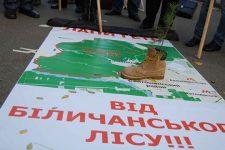 Котеджі замість нацпарку. На Київщині можуть вирубати Біличанський ліс