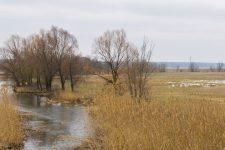 +7 та дощі зі снігом: якою буде погода в Україні на вихідні (КАРТА)
