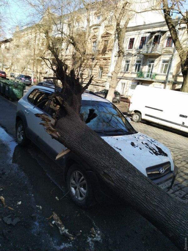 Вітер в Одесі