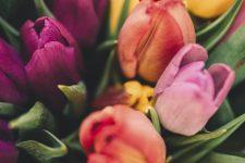 З Міжнародним жіночим днем! Прикольні привітання у картинках