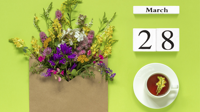 28 березня свято