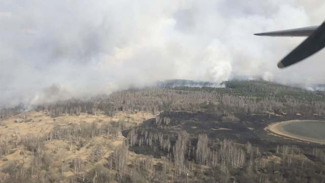 У Чорнобильській зоні відчуження виникла лісова пожежа