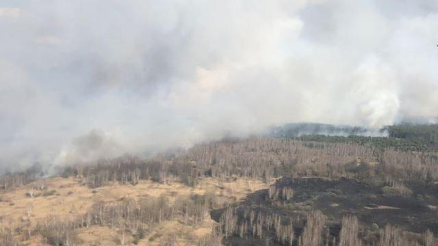 Пожежа у Чорнобильській зоні: авіація скинула 50 тонн води, щоб загасити вогонь