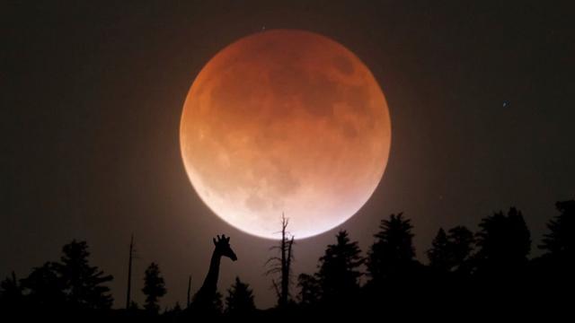 Місячний календар на листопад 2020: рекомендації та сприятливі дні