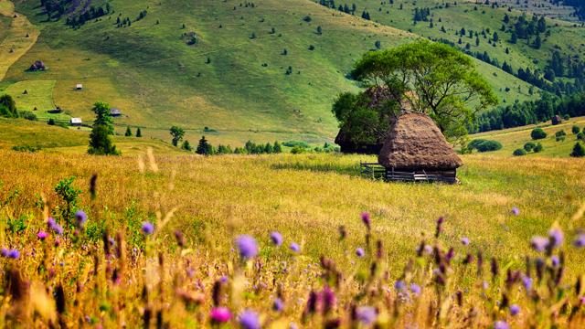 Відпочинок в Україні влітку 2020: куди їхати і що робити