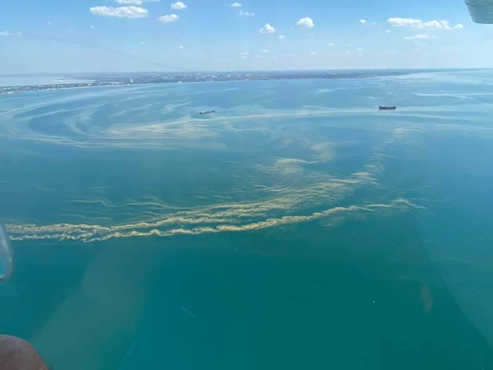 Вода, як кисіль, і лякає запах: у Чорному морі радять не купатися
