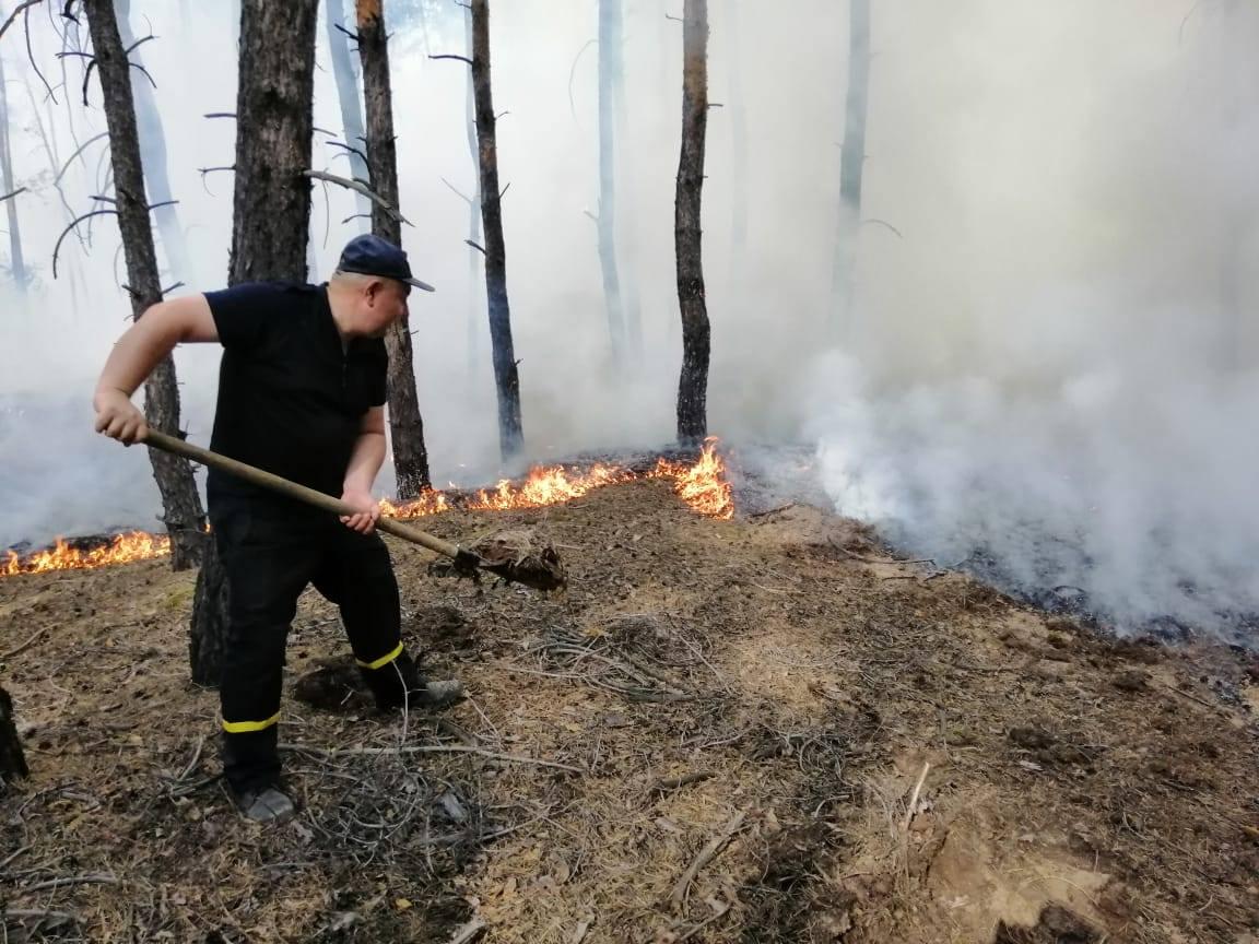 Лісові пожежі у Луганській області і Смоляниново - ВІДЕО і ФОТО пожеж