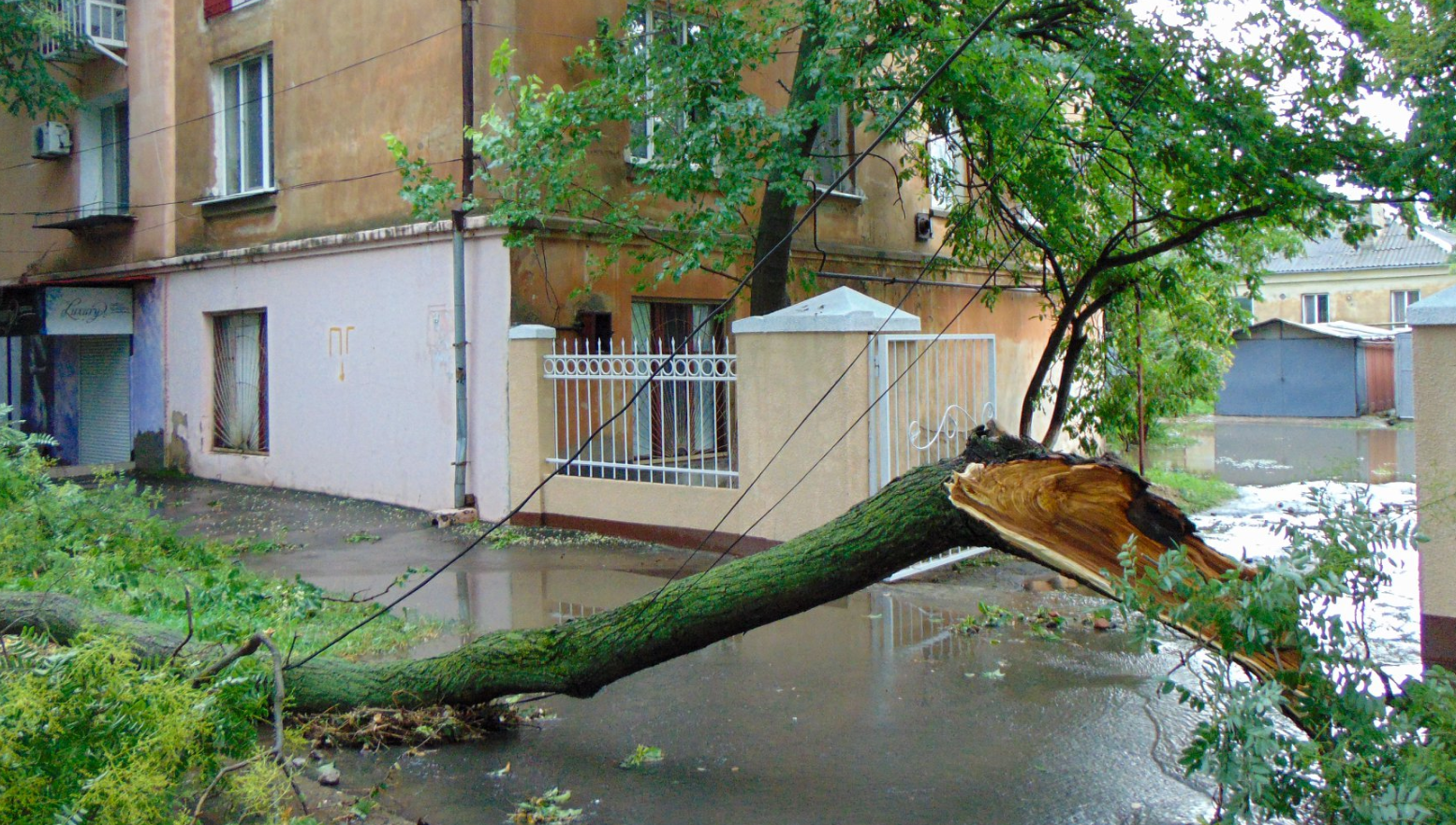 Негода на Одещині: град розміром з яйце та повалені дерева