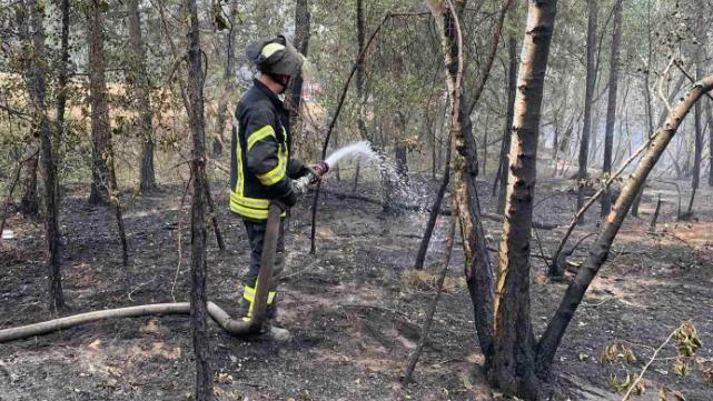 Три осередки тління: в Луганській області триває гасіння пожежі
