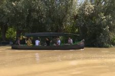 Венеция на юге Украины: что посмотреть в Вилково и цены на лодки