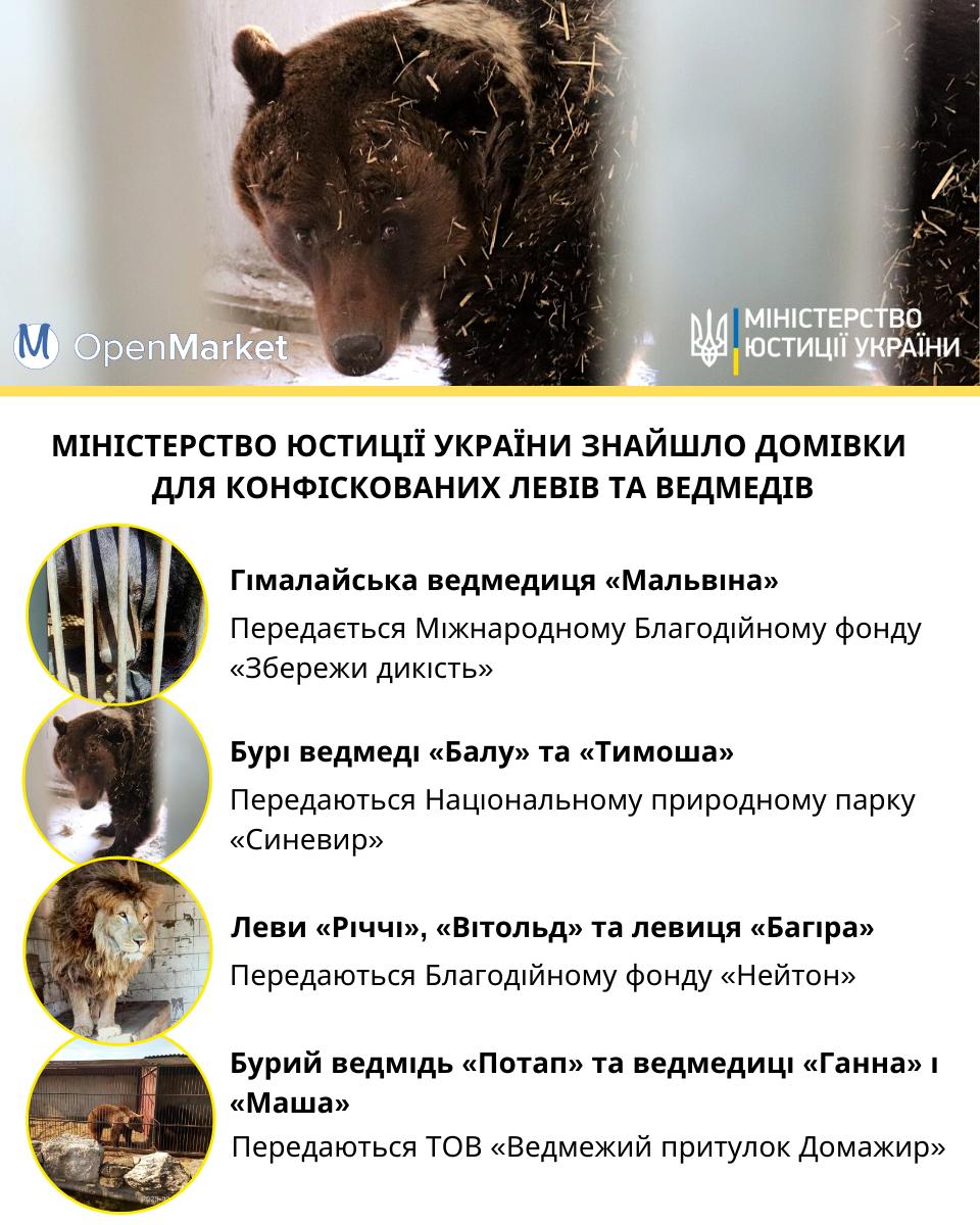 Конфіскованих тварин не продаватимуть на аукціонах, їх передадуть у притулки – Мін'юст