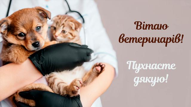 з днем ветеринара привітання