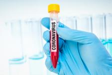 Свинец против Covid-19: в США подросток нашла метод борьбы с вирусом