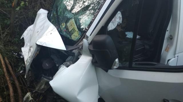 На Львівщині мікроавтобус з пасажирами збив пішохода, двоє загиблих