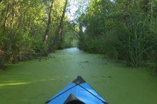 Активный отдых на Шацких озерах: дикий остров и сафари на внедорожнике