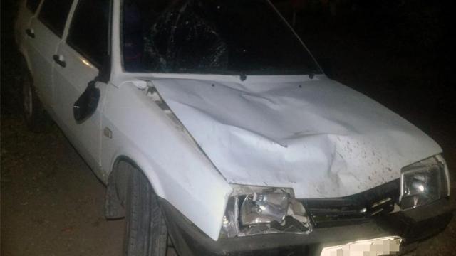 ДТП у Запорізькій області: водій збив трьох пішоходів