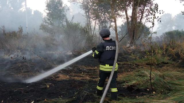Пожежа в Луганській області: подробиці пожежі