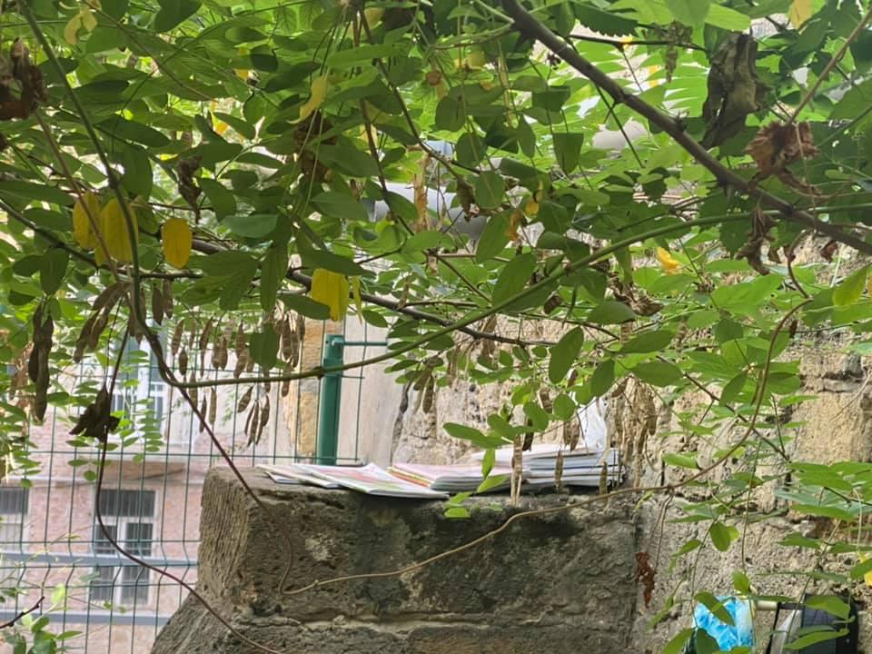 В Одесі 9-річний хлопчик три дні жив у парку (ФОТО)