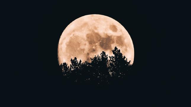 Ретроградний Марс з 10 вересня до 14 листопада 2020: гороскоп для всіх знаків зодіаку