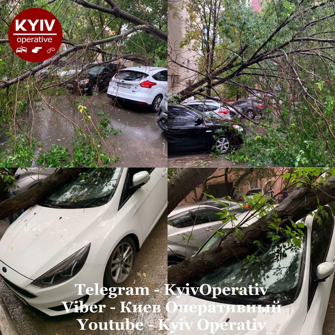 Злива затопила вулиці та повалила дерева: фото наслідків негоди в Києві
