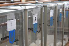 В Україні закінчився другий тур місцевих виборів у семи містах
