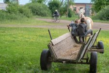 Незаконна приватизація земель: що відбувається у селах на Київщині