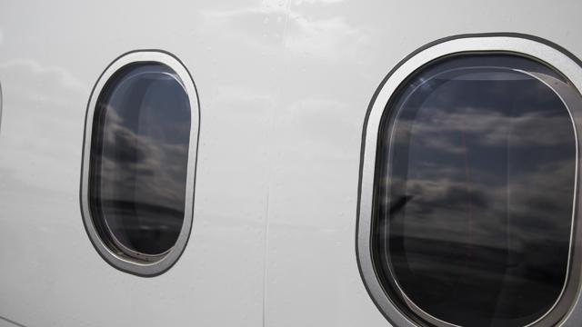 В США пара закоханих з собакою вистрибнули з літака, коли той злітав