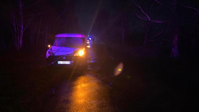 ДТП під Житомиром – водій насмерть збив дитину