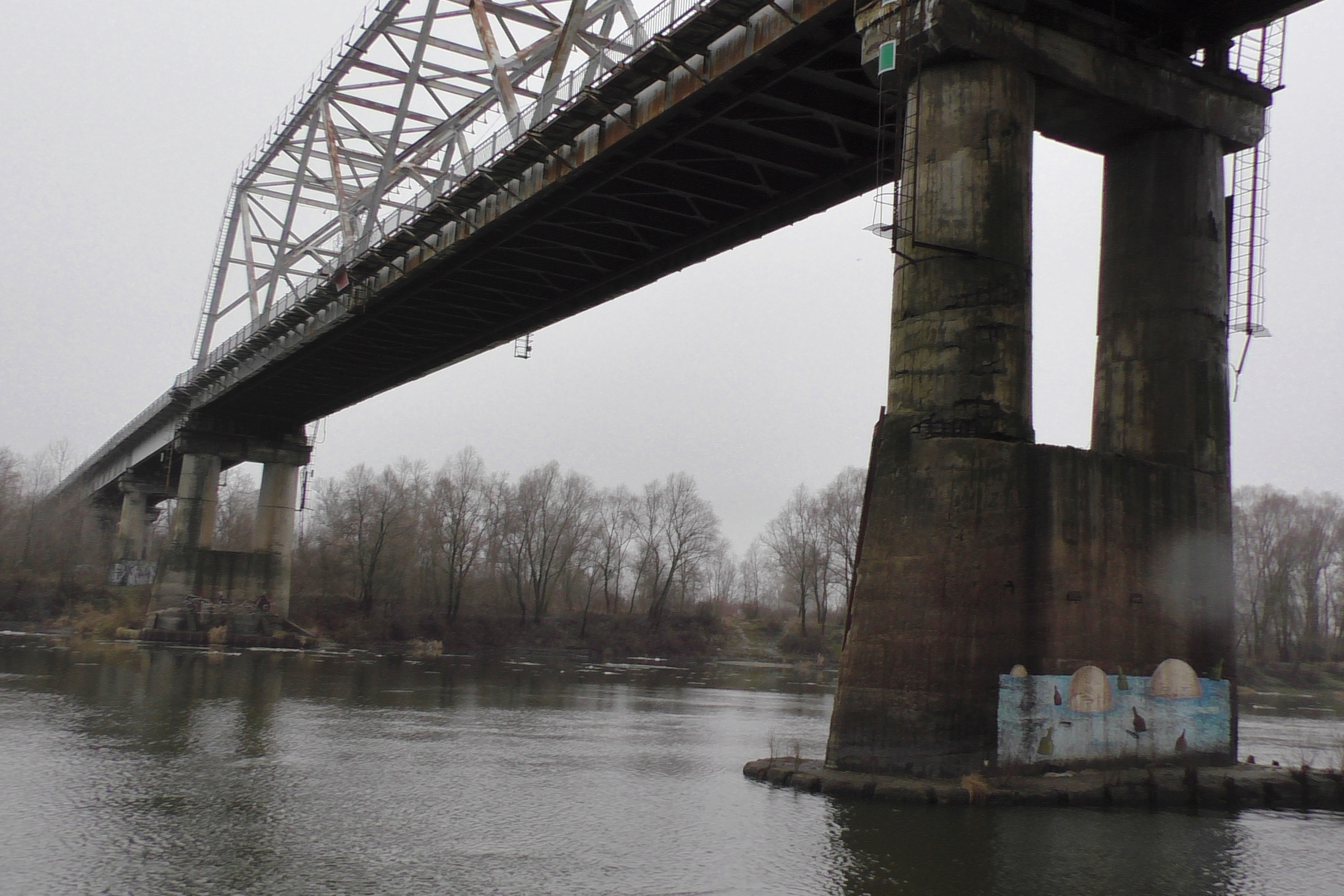 У Чернігові жінка впала з мосту у Десну, її віднесло течією