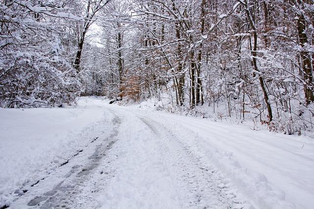 США страждають від снігового шторму: кількість загиблих зросла до 36