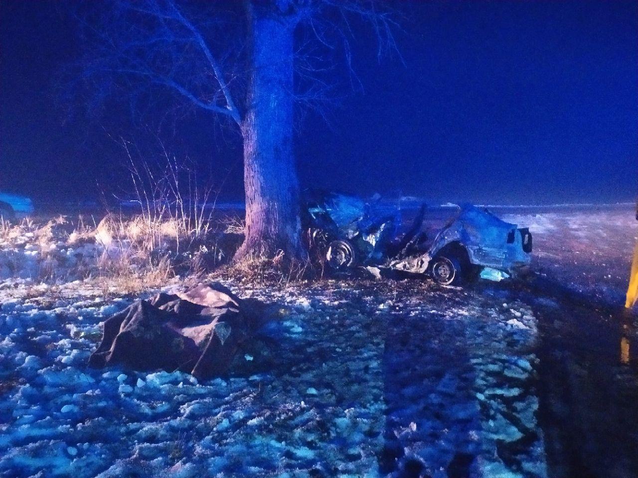 На Житомирщині авто влетіло у дерево і загорілося: троє загиблих