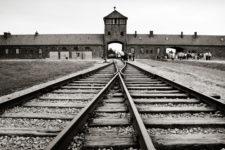 Газовые камеры, крематории и опыты на людях: 10 фактов о концлагере Освенцим