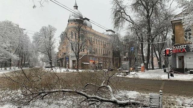 Одесу засипало снігом: дерева повалені, в'їзд вантажівок обмежено