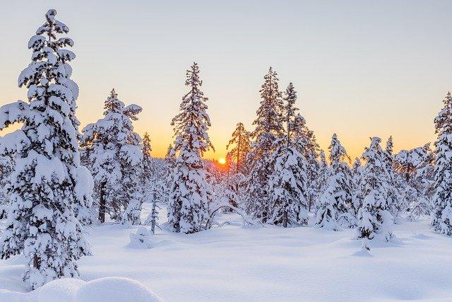 Мороз до -15 залишається: прогноз погоди в Україні на тиждень (КАРТА)