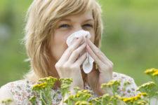 Аллергия: симптомы, лечение и профилактика — советы врача