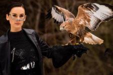 Go-A обвинили в эксплуатации птицы из Красной книги в клипе для Евровидения