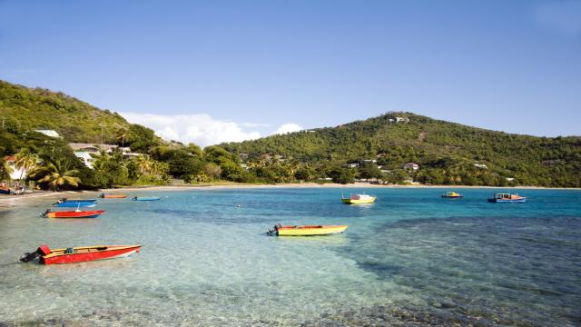 Сент-Вінсент і Гренадіни