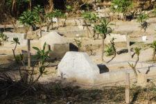 В Африці стратили 12 іноземців, їх знайшли без голів і з зв'язаними руками