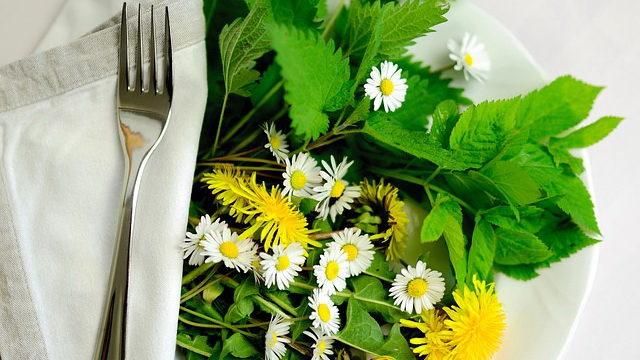 Как можно похудеть с помощью трав — рассказывает фитотерапевт