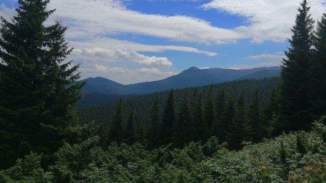 Горы и вкусная еда: на Закарпатье создали маршруты для самостоятельных путешествий