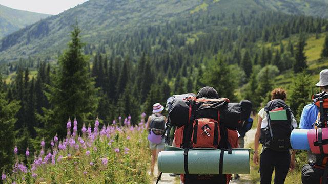 Карпаты для новичков: маршруты и подготовка к походу