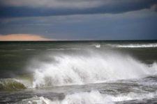 В Одессе зацвело Черное море, в воде — токсичная бактерия