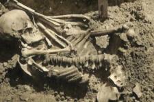 В Японії знайшли рештки людини, на яку напала акула 3 тис. років тому