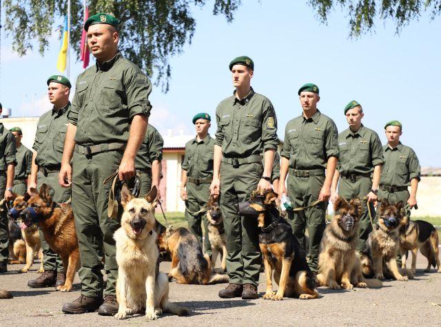 Службові собаки прикордонників вперше в історії візьмуть участь у параді до Дня Незалежності