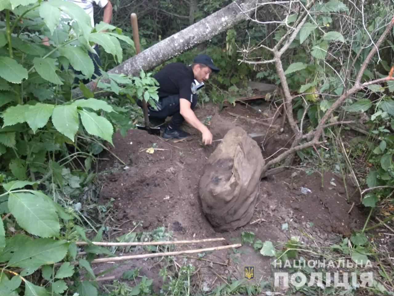 Рештки закопав у лісі: під Шосткою чоловік вбив і розчленував матір