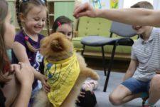 Каністерапія: як собаки лікують дітей та тих, хто повернувся з війни