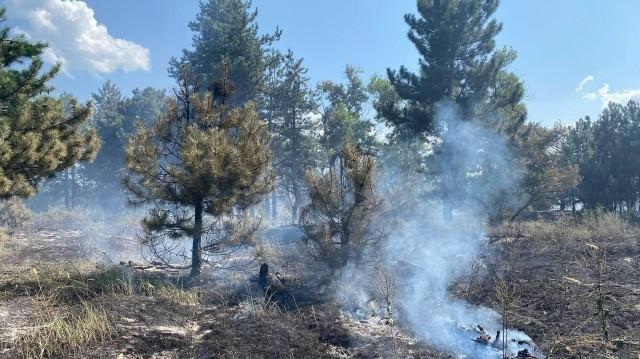 Пожежа на Хортиці