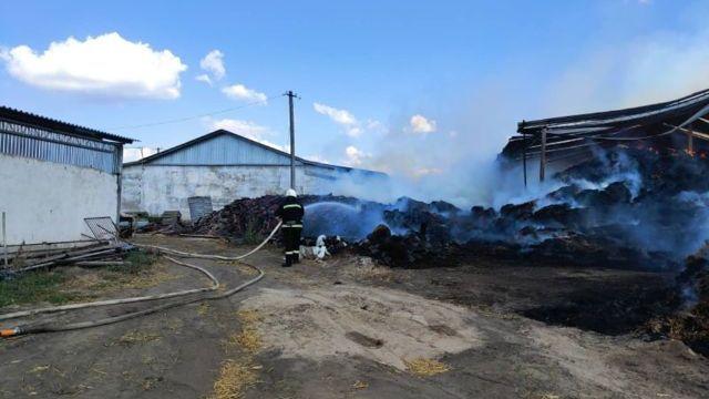 Вогонь розповсюдився на 1 тис. кв. м: під Миколаєвом горіла ферма